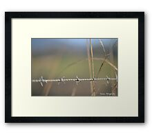 [Metal] Barbed wire Framed Print