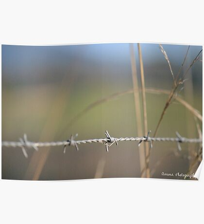 [Metal] Barbed wire Poster