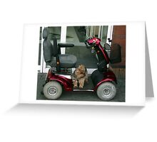 Where has my Driver gone Now !!! Greeting Card