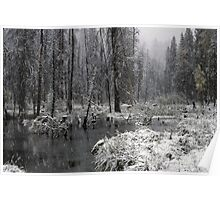 First Snow on Green Creek Poster