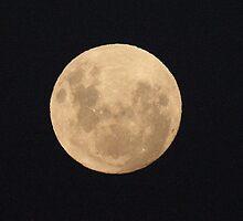 Super moon by Denzil
