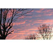 PINK SKY AT NIGHT  Photographic Print