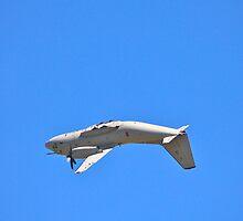 Incredible C-27J Spartan by LJ_©BlaKbird Photography