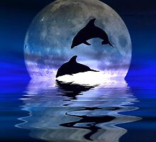 Dolphin moon by chrissy mitchell