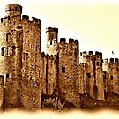 Conwy Castle. North Wales  by Graham Southall