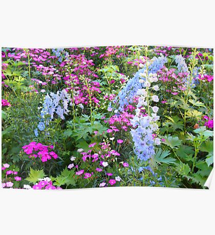 Symphony Of Flowers Poster