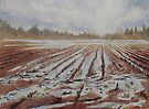 Spring Flood by JennyArmitage