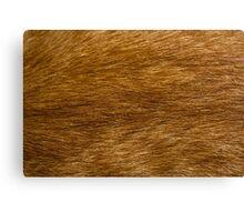 The Cat Fur Canvas Print