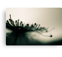 thin links Canvas Print