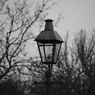 Old Gas Lamp by lendale