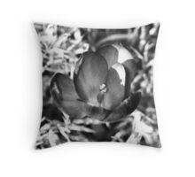032011-71 Throw Pillow