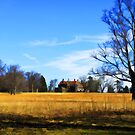 """Waveny Mansion in March by Christine """"Xine"""" Segalas"""