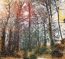 Trees at Cayuga Lake by webetilin