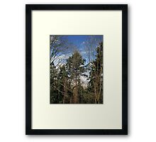 Our Park: McKinley Park in Tacoma 20110319a Framed Print