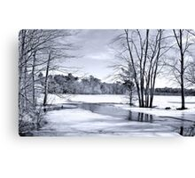 Pond in Black and white Canvas Print