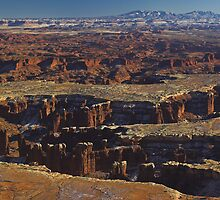 Canyonlands, Utah by Tamas Bakos
