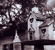 Wooden Birdhouse in Black and White by Ashleigh Johnson