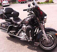 Harley Davidson at Town Square in Lynchburg by Charldia