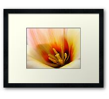 Tulip Flower macro Peach Orange Flowers art Baslee Troutman Framed Print