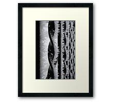 Winter Shards Framed Print