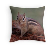 Sweet Little Chippy Throw Pillow