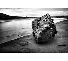 Log at Medano Creek Photographic Print