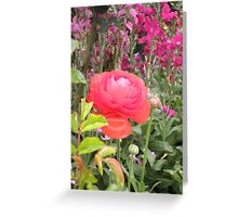 Silky blur Greeting Card