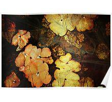 Autumn Drama Poster