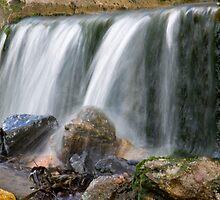 A Gentle Flow by Lynne Morris