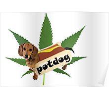 Potdog Poster