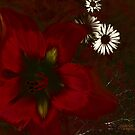 Passion by arline wagner