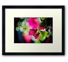 When my dream is Bokeh...:On Featured: The-power-of-simplicity Group Framed Print