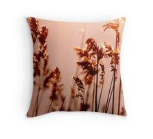Backlit Reed - Denmark Throw Pillow