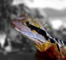 Fractilus waterdragon by Jayson Gaskell
