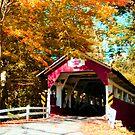 Historic Covered Bridge in Autumn, Western Pennsylvania by Georgia Wild
