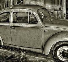Beetle in a Shed..... by Carol Knudsen