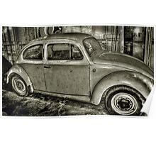 Beetle in a Shed..... Poster