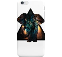 Native Elephant iPhone Case/Skin