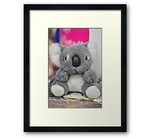 Koala Doll Framed Print