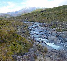 Wandering Alpine Stream – Tongariro National Park  by Henry Inglis