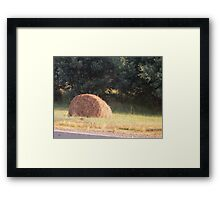 Highway Hay Ball Framed Print