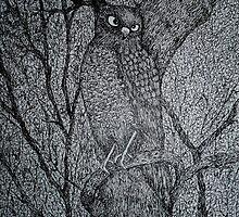 Sharp Shinned Hawk by Nata (ArtistaDonna) Romeo