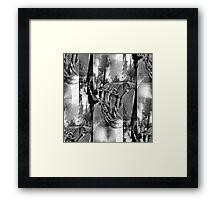 P1390581 _GIMP Framed Print