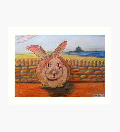331 - LINDISFARNE BUNNY - DAVE EDWARDS - COLOURED PENCILS - 2011 Art Print