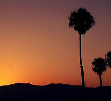 Santa Monica Silhouette by dangrieb
