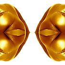 gold mirror by bluenote