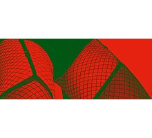 red green net 4 Photographic Print