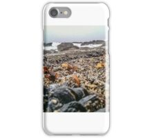 mussel   iPhone Case/Skin