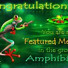 Amphibians Group Banner Challenge entry by murals2go