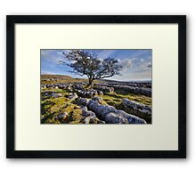 Above Langcliffe - The Yorkshire Dales Framed Print